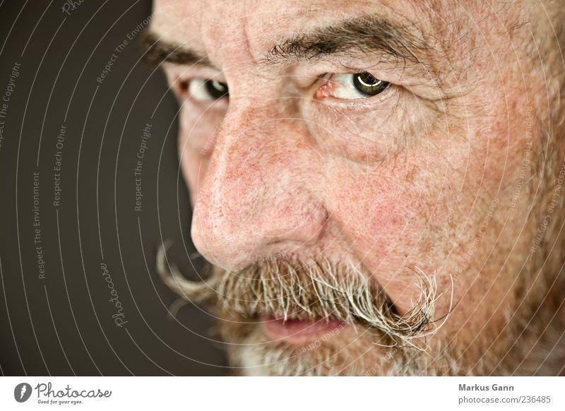alter Mann Mensch Erwachsene Auge Senior Kopf Mund natürlich maskulin Nase 60 und älter Männlicher Senior Weisheit ernst Oberlippenbart