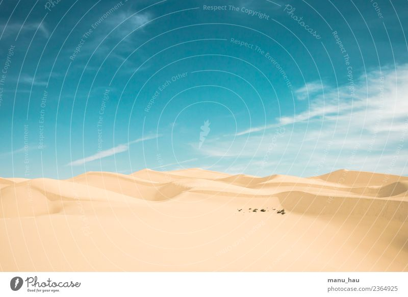 Desert View Ferien & Urlaub & Reisen Tourismus Ausflug Abenteuer Ferne Freiheit Safari Sommer Sonne Umwelt Natur Landschaft Sand Himmel Wolken Frühling Wüste