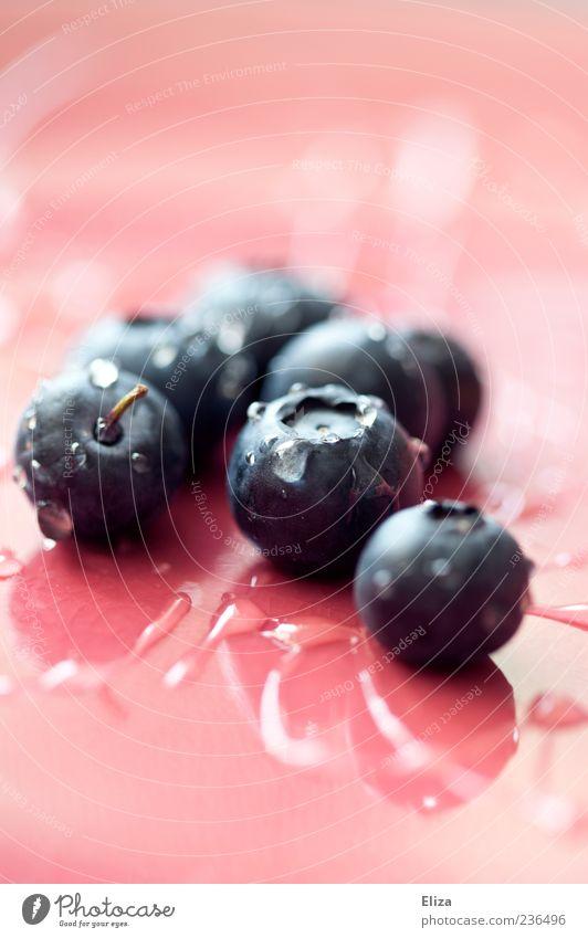 Heidelbeerig Gesundheit Frucht rosa glänzend nass frisch mehrere Wassertropfen Tropfen lecker feucht Beeren Blaubeeren