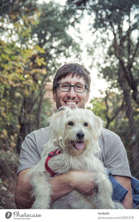 Für immer Freunde Lifestyle Freude Freizeit & Hobby Abenteuer Camping Sommerurlaub wandern Junger Mann Jugendliche 30-45 Jahre Erwachsene Umwelt Natur Wald