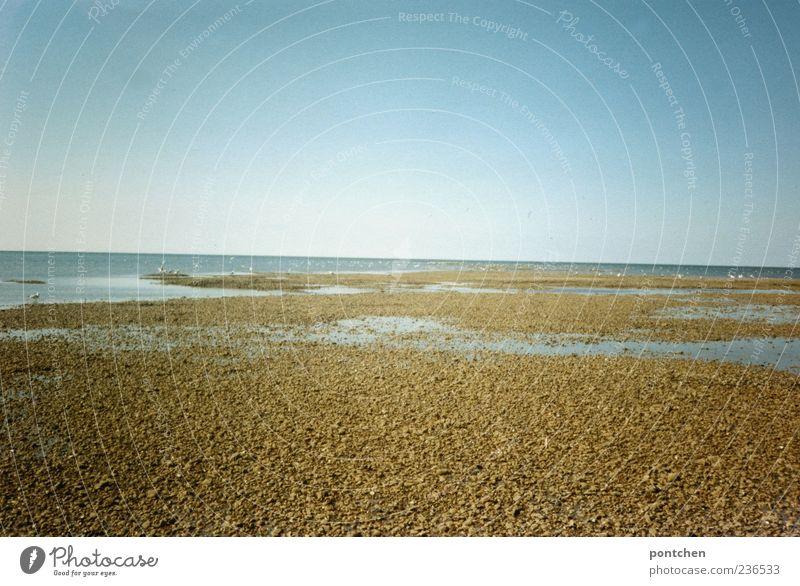 5 Monate am Meer Himmel Natur blau Wasser Ferien & Urlaub & Reisen Meer Sommer Ferne Sand Reisefotografie Schönes Wetter Nordsee Kieselsteine Stein