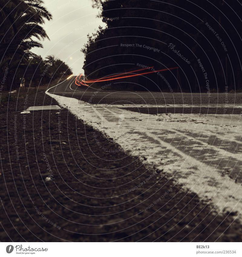 i´m a frog... i´m scared... Natur Ferien & Urlaub & Reisen weiß rot Wolken Straße Stein braun authentisch Geschwindigkeit Vergänglichkeit Ewigkeit Fußweg Verkehrswege Straßenbelag Mobilität