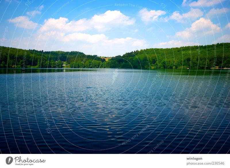 * Trinkwasser Ferien & Urlaub & Reisen Ferne Freiheit Sommer Sommerurlaub Umwelt Natur Wasser Himmel Schönes Wetter Wald See Eifel Deutschland Farbfoto