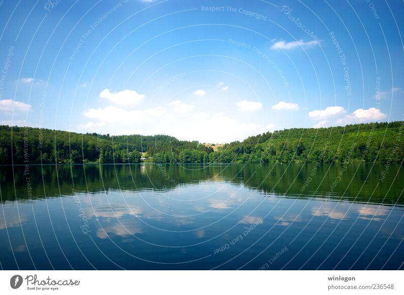 Himmel Natur Wasser Sommer Ferien & Urlaub & Reisen Ferne Wald Freiheit Umwelt Landschaft See Deutschland Trinkwasser Idylle Schönes Wetter Sommerurlaub