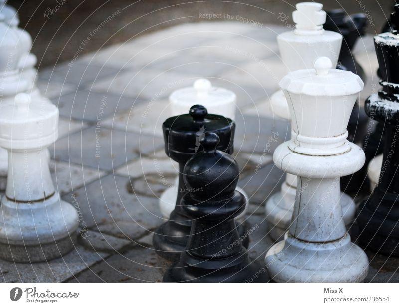 Outdoor-Schach Freizeit & Hobby Spielen Konzentration planen Schachfigur Schachbrett Figur Farbfoto Gedeckte Farben Außenaufnahme Nahaufnahme Menschenleer