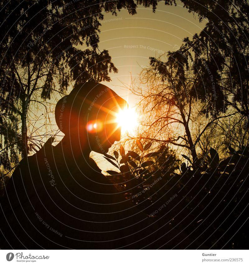 die Hoffnung die du bringst... Frau Himmel Natur Pflanze weiß Baum Blatt Freude schwarz Umwelt gelb Kopf Park gold Zukunft Ast
