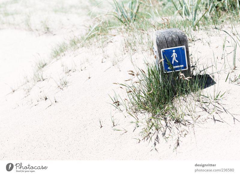 Finderlohn Safari Sommer Sommerurlaub Strand Meer Sand Pflanze Gras Küste Nordsee Zeichen Schilder & Markierungen wandern hell Wegweiser Fußweg Piktogramm
