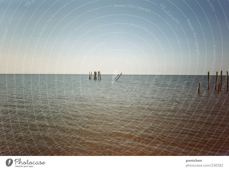 Blick ins Meer mit Holzpfeilern Umwelt Wasser Himmel Wolkenloser Himmel Sommer Küste Nordsee Stimmung Buhne Ferien & Urlaub & Reisen Tourismus blau Farbfoto
