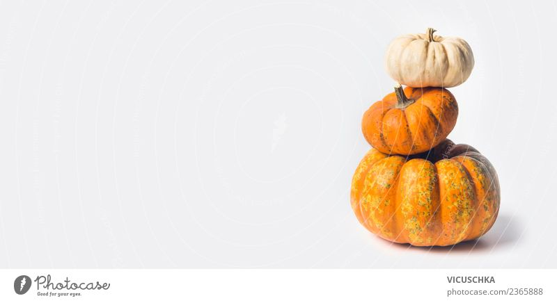 Kürbis Stapel auf weiß Lebensmittel Gemüse kaufen Stil Gesunde Ernährung Feste & Feiern Erntedankfest Halloween Natur Herbst gelb Design Hintergrundbild