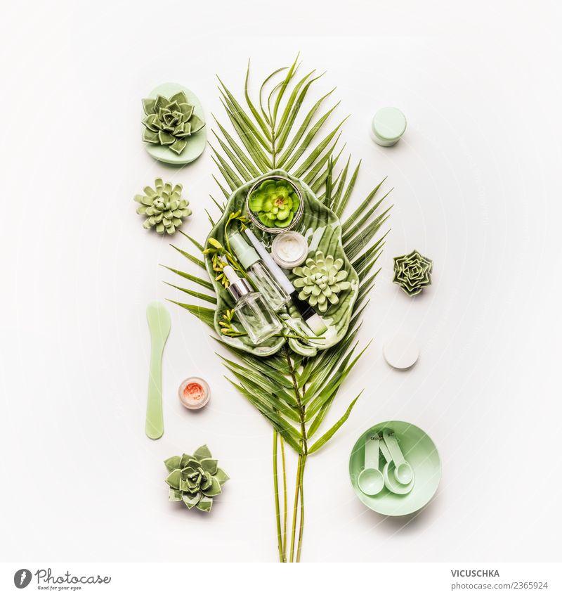 Grüne Natur Kosmetik kaufen Stil Design schön Körperpflege Creme Wellness Leben Wohlgefühl Spa trendy grün Sukkulenten Blatt Hautpflege Produkt Accessoire