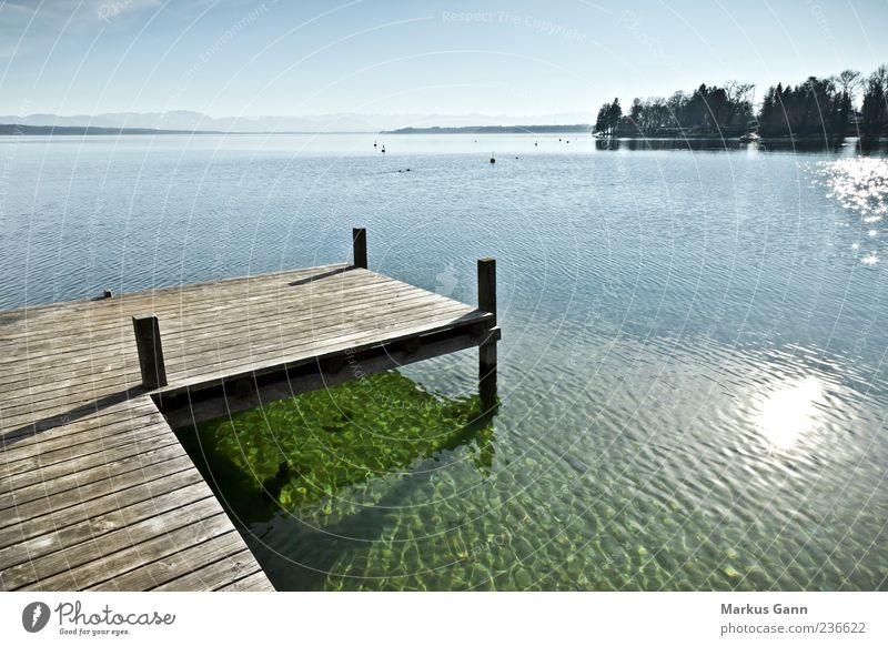 Steg am See Natur blau Ferien & Urlaub & Reisen Sonne ruhig Erholung Landschaft Wärme Holz grau See nass Idylle Seeufer Steg Anlegestelle