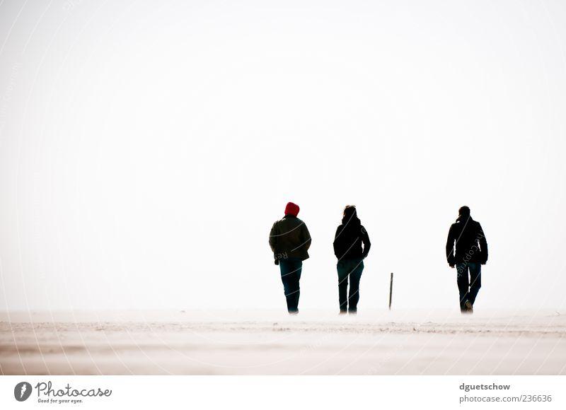 3 1/2 Mensch Frau Mann Strand Erwachsene Erholung Sand Luft Freundschaft Zufriedenheit gehen Ausflug Perspektive Spaziergang Silhouette Strandspaziergang