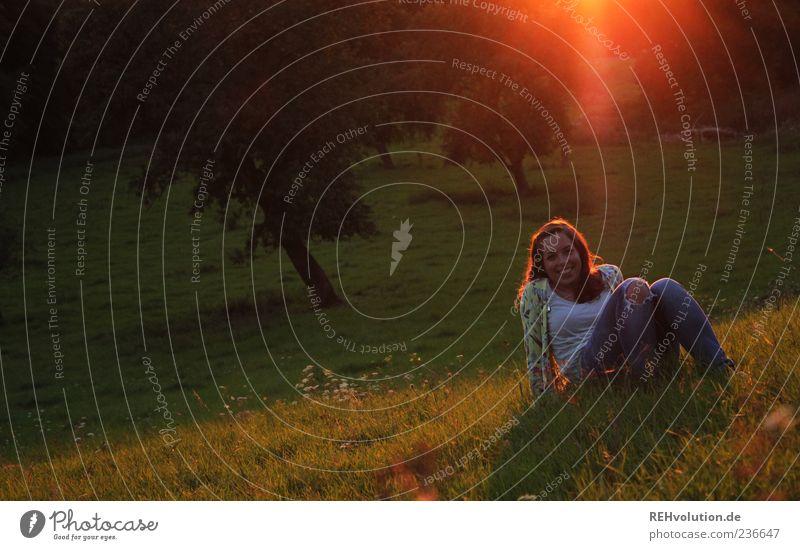 sonnenmomentativ Mensch Natur Jugendliche Baum Erwachsene Landschaft Wiese feminin Gefühle Gras Glück Stimmung orange Zufriedenheit sitzen liegen