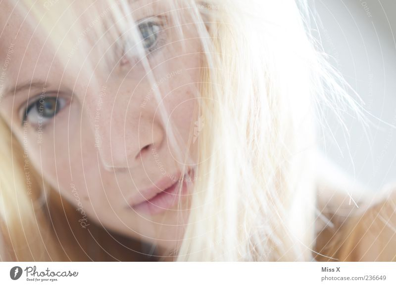 Hell feminin Junge Frau Jugendliche 1 Mensch 18-30 Jahre Erwachsene Haare & Frisuren blond Glück schön Farbfoto Innenaufnahme Nahaufnahme Morgen Licht High Key