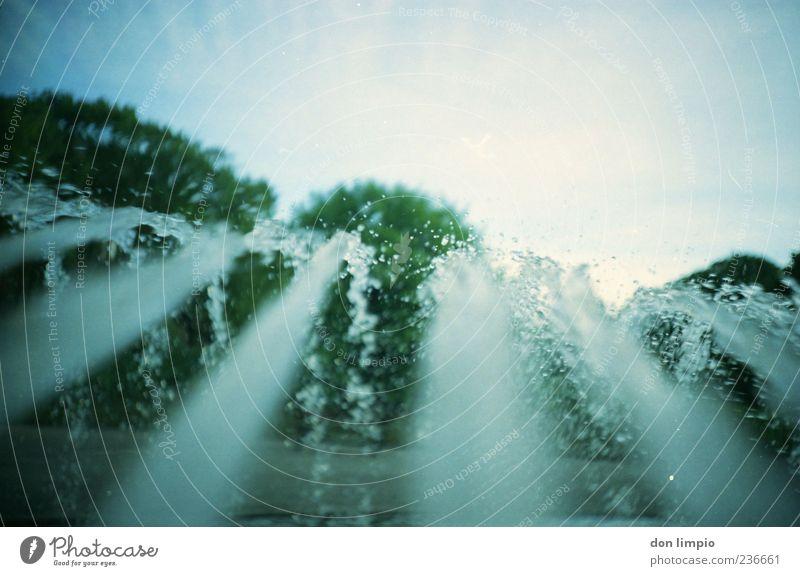 ...und es war sommer Wasser Baum Sommer Wassertropfen Schönes Wetter analog Brunnen Springbrunnen Wasserstrahl