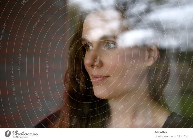 Sophia Stil schön harmonisch Wohlgefühl Wohnung Garten Fenster Junge Frau Jugendliche Gesicht 18-30 Jahre Erwachsene Pflanze Baum brünett langhaarig Glas