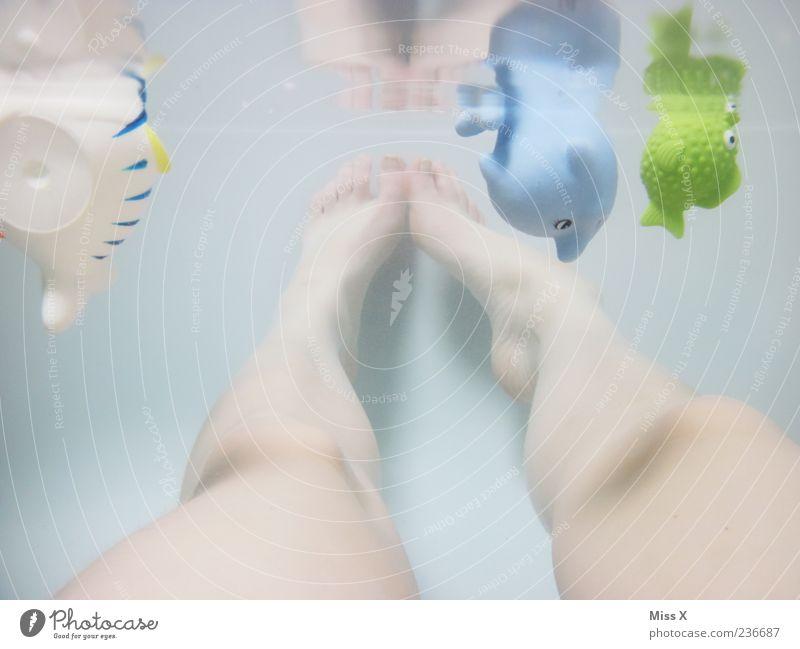 Gummitiere Spielen Beine Fuß Schwimmen & Baden Freizeit & Hobby nass Fisch Badewanne Spielzeug tauchen Unterwasseraufnahme Frauenbein Aktion mehrfarbig Mensch