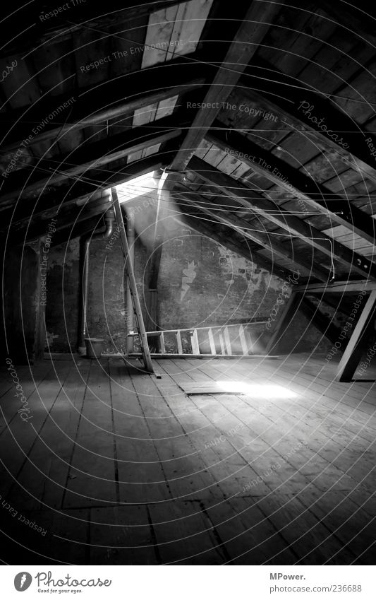 Dachboden II weiß schwarz ruhig dunkel Holz Stein Stimmung Treppe hoch Beton Dach erleuchten Leiter aufsteigen Wäscheleine Staub