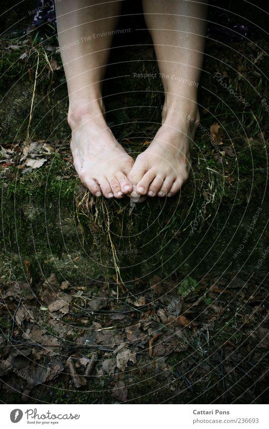 bekam ein Geheimnis. Beine Fuß Pflanze Gras Moos Blatt Barfuß berühren machen sitzen dreckig dunkel einzigartig dünn wild Treppe Zehen Sträucher Stein