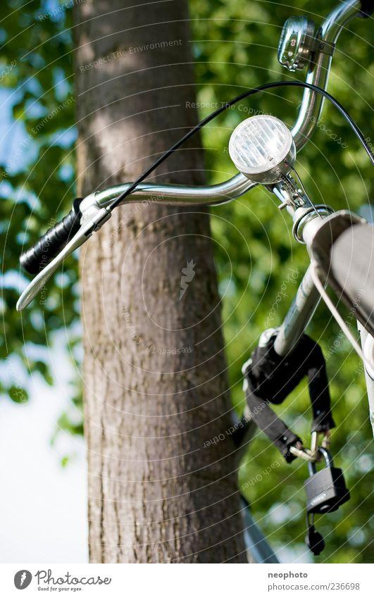 Schönwetterfahrrad alt blau grün Baum Ferien & Urlaub & Reisen Sommer Park Fahrrad Ausflug fahren Schönes Wetter Schloss silber verbinden anlehnen