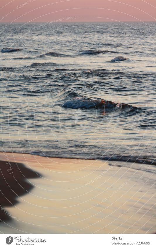 Ostseestimmung Natur Ferien & Urlaub & Reisen Wasser Farbe Meer Erholung ruhig Strand Küste Freiheit Horizont Wellen Urelemente Seeufer violett Sehnsucht