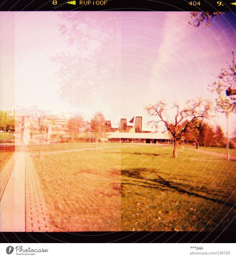 8 < RVP100F 404 9. < Natur Stadt Baum Wiese Architektur Wege & Pfade Gebäude rosa Beton modern retro Rasen violett Bauwerk Fußweg analog