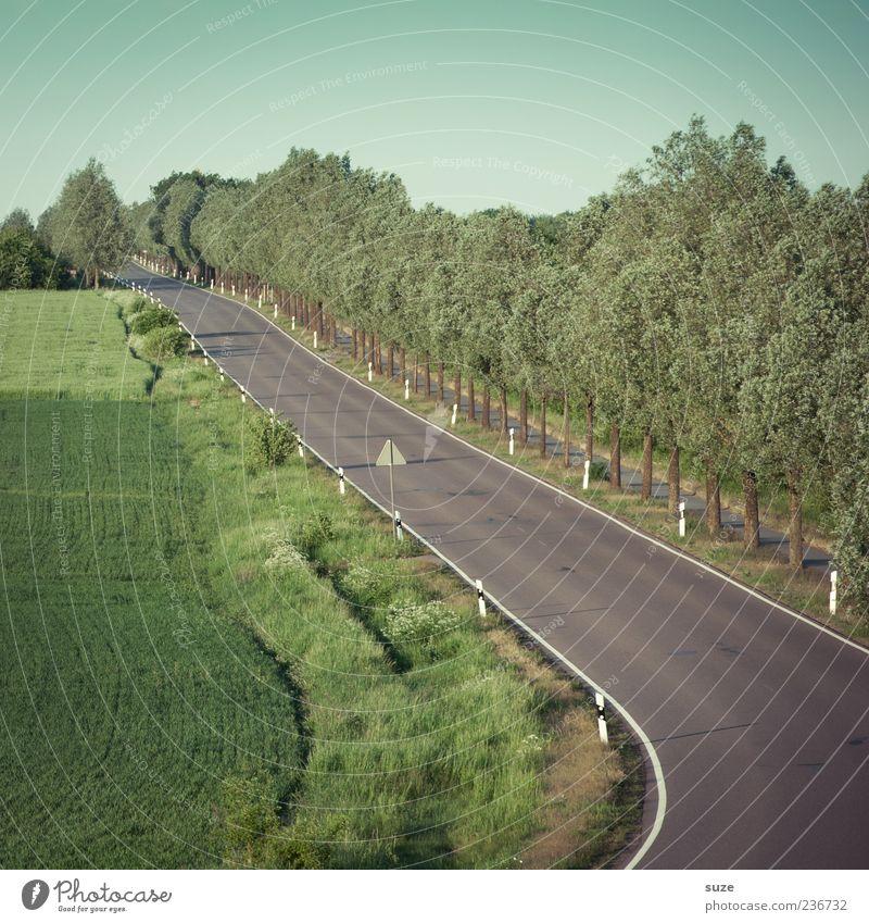 Landstraße Sommer Umwelt Natur Landschaft Himmel Klima Schönes Wetter Baum Wiese Feld Verkehr Verkehrswege Straßenverkehr Wege & Pfade Ziel Kurve Asphalt