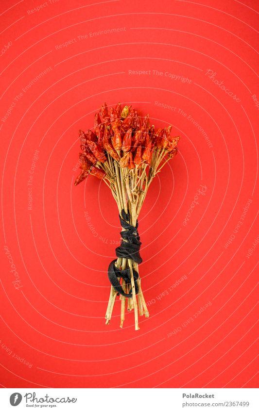 #S# Chilibaum Lebensmittel rot Scharfer Geschmack trocknen Baum Kreativität ästhetisch aufhängen Kräuter & Gewürze Essen zubereiten bedrohlich getrocknet Küche