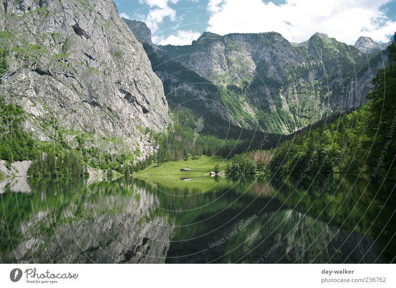Spiegelwelt Königssee Himmel Natur blau Wasser weiß grün Sommer Wolken schwarz Wald Landschaft Berge u. Gebirge braun Felsen Alpen Schönes Wetter
