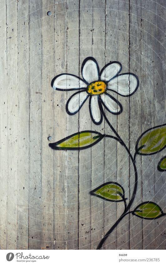 Eine Erwachsene aus'm Ghetto Umwelt Blume Mauer Wand Fassade Graffiti authentisch Freundlichkeit Fröhlichkeit niedlich schön grau Wachstum Zeichnung Putz