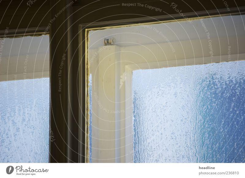 Fenstertropfentraum Holz Glas Tropfen eckig fest kalt nass blau schwarz Schutz Rätsel Farbfoto Nahaufnahme Experiment Menschenleer Morgendämmerung Vorderansicht