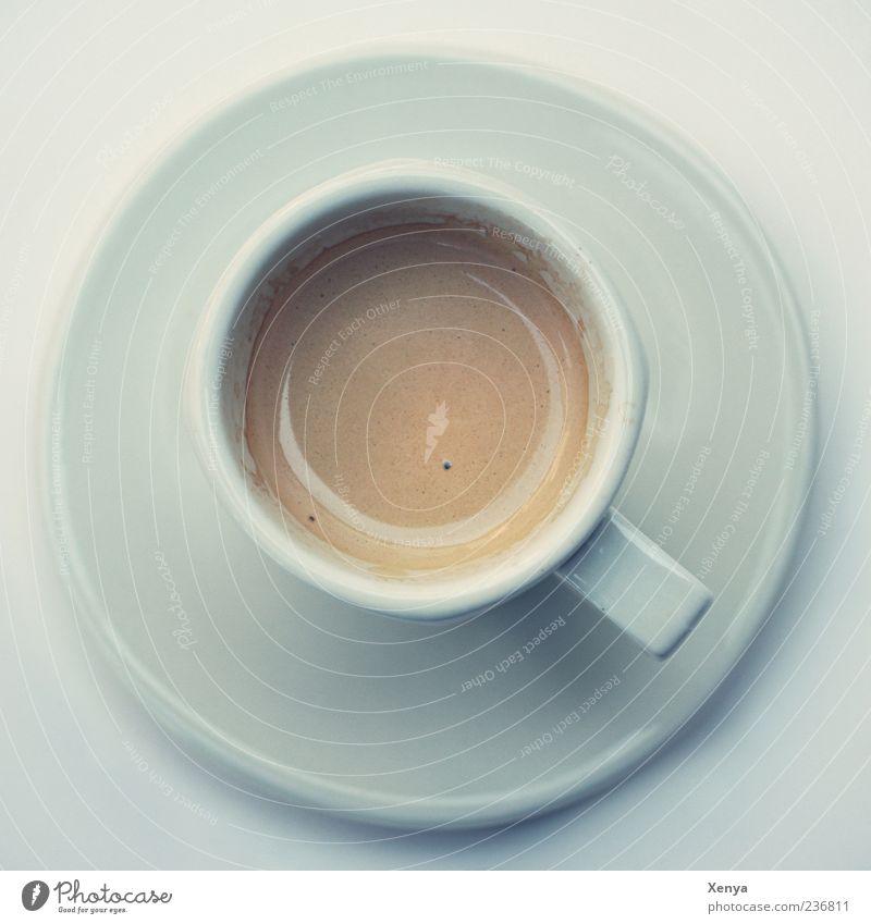 Vier für birdy´s weiß braun frisch Kaffee Café Tasse lecker Espresso Gastronomie Kaffeetasse Porzellan Lebensmittel Getränk Keramik Untertasse Kaffeetrinken