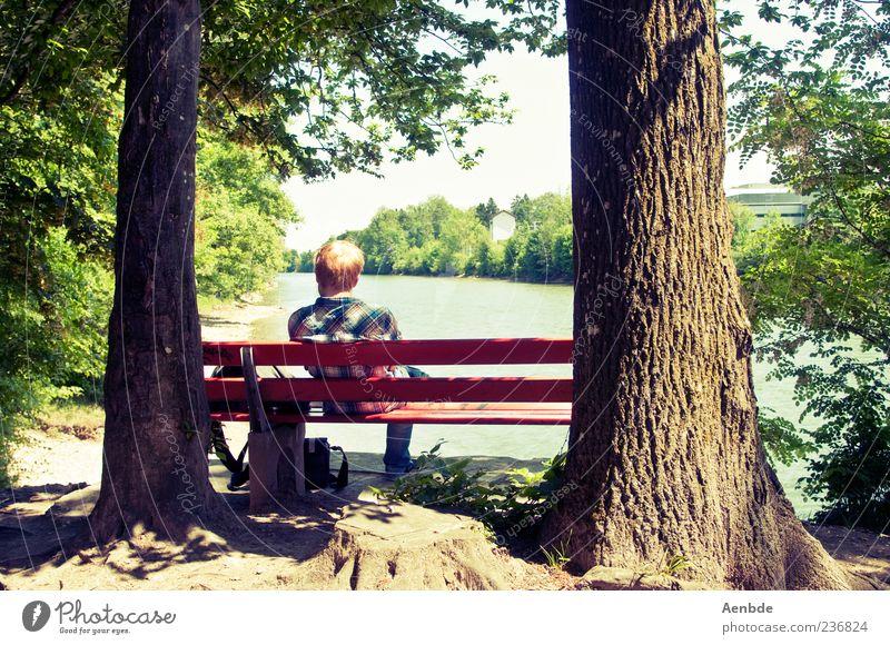 Pause Freude Glück Ferien & Urlaub & Reisen Ausflug Bank Mensch maskulin Leben 1 Umwelt Natur Wasser Sommer Schönes Wetter Baum Wald Flussufer Hemd rothaarig