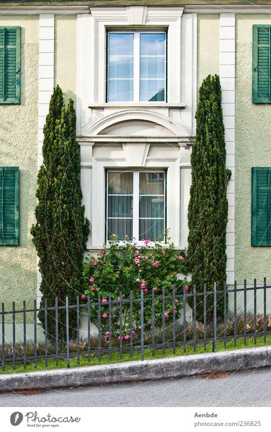 Zypressen vorm Haus Traumhaus Mauer Wand Fassade Fenster ästhetisch elegant grün Fensterladen Fensterbogen Gartenzaun Sträucher Farbfoto Außenaufnahme