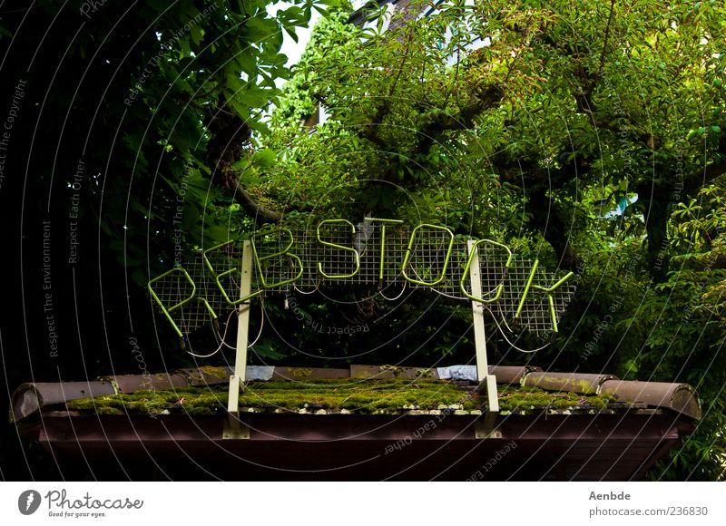 Rebstock Umwelt dunkel Logo Dach grün Baum Moos Gastronomie Dachziegel Farbfoto Außenaufnahme Menschenleer Tag Froschperspektive Natur Baumkrone