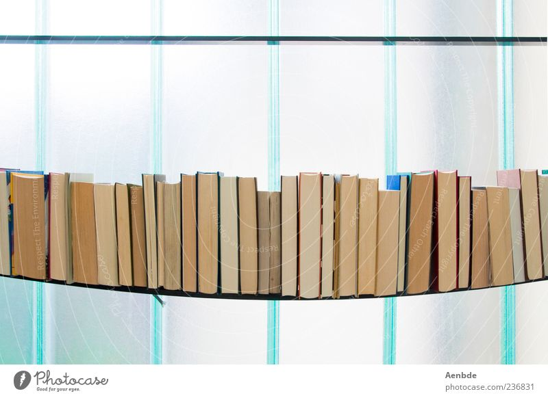 durchgebogen... blau Fenster kalt Buch ästhetisch Medien Reihe graphisch schwer Regal Möbel biegen Bücherregal Überfordern