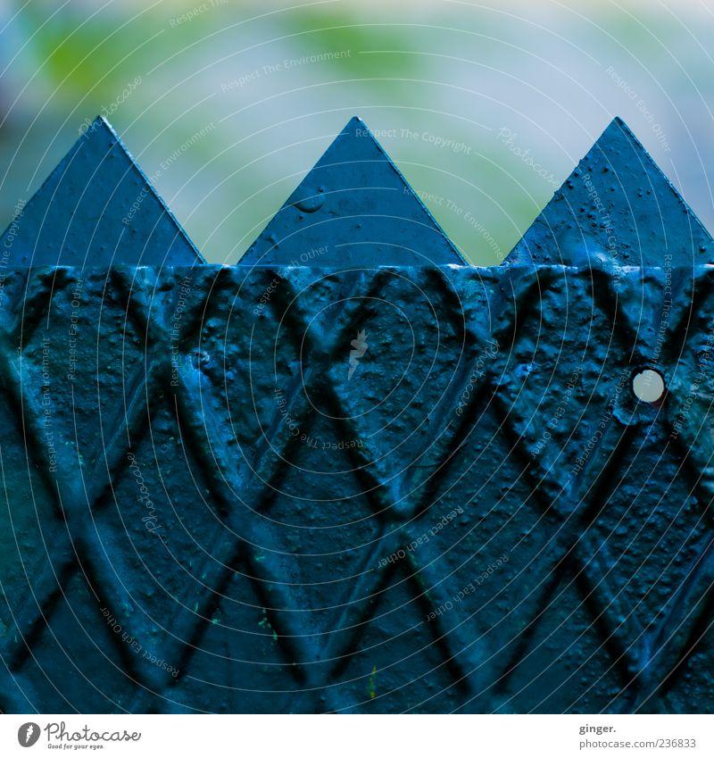 Montagmorgen - jetzt aber zackig! Umwelt grün Tor Loch Zacken Barriere Zaun dunkel dunkelgrün Raute gekreuzt Metall Metallzaun Eisen Eisentor 3 Farbfoto