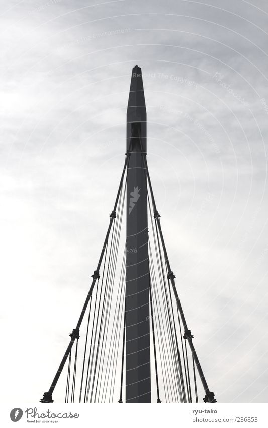 emporragend. Brücke Bauwerk Architektur Beton Metall Stahl Linie Pfeil Streifen ästhetisch gigantisch hoch grau Vertrauen Sicherheit Horizont kalt Kraft