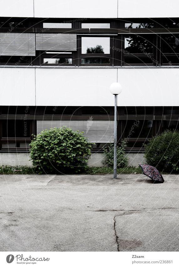 trist Haus Schulhof Sträucher Platz Bauwerk Gebäude Architektur Fenster ästhetisch dunkel einfach kalt trashig Ordnung Perspektive planen Schule Verfall