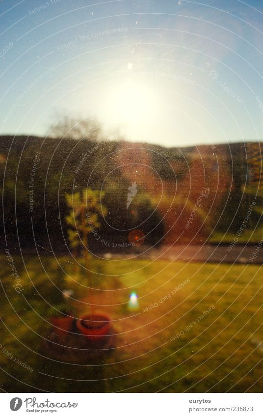 Unschärfe Umwelt Natur Landschaft Himmel Horizont Sonne Sommer Garten blau gelb Blick Fensterscheibe Farbfoto Außenaufnahme Textfreiraum oben Morgen Licht