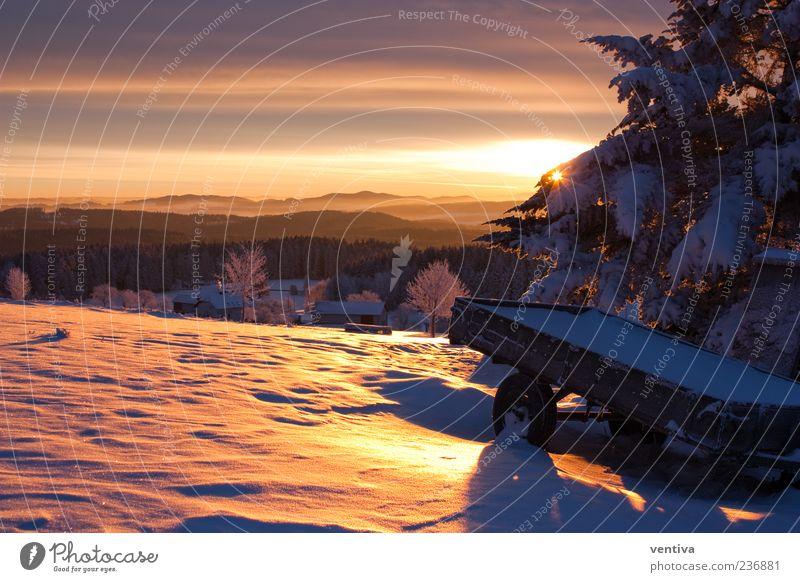 Sonnenaufgang im Mühlviertel Himmel Natur Pflanze Sonne Winter Erholung Landschaft Schnee Hügel Schönes Wetter Tanne Schneelandschaft Sonnenaufgang Anhänger Schneedecke