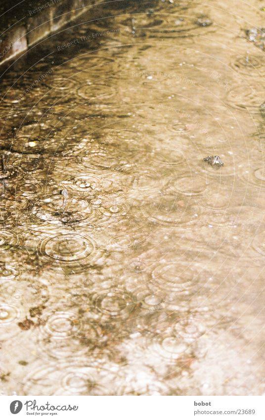 Raindrops Regen Wellen Reflexion & Spiegelung Trauer nass feucht Wasser Traurigkeit kräuseln Überschwemmung