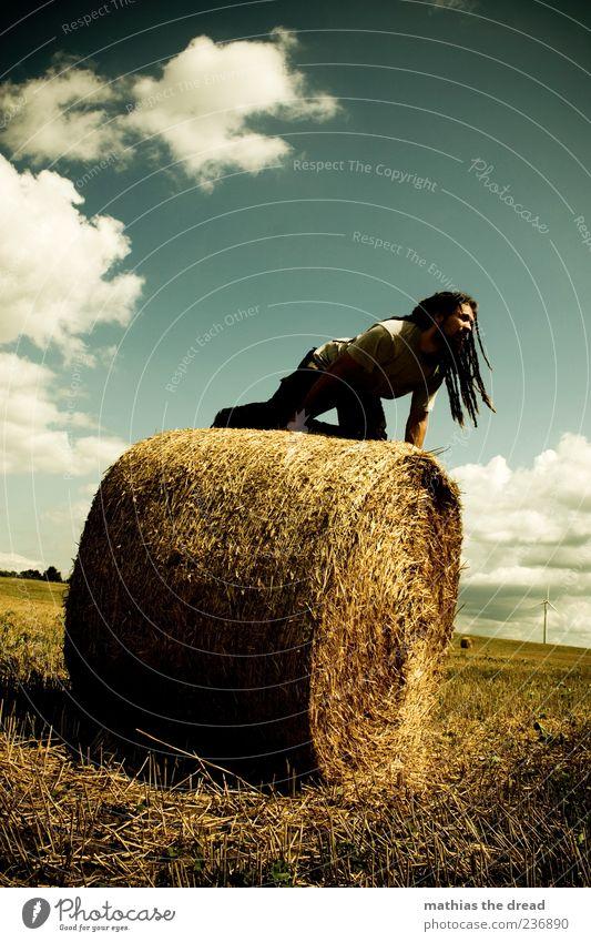 AUF DER LAUER Mensch Himmel Natur Jugendliche Pflanze Sommer Wolken Erwachsene Umwelt Landschaft Wiese Gras Stil Horizont Wind Feld