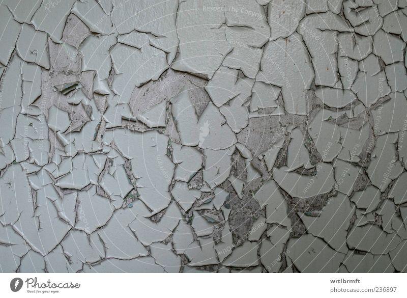 Die Farbe platzt ab Haus Menschenleer Gebäude Mauer Wand alt dreckig kaputt grau chaotisch Einsamkeit Ende stagnierend Vergänglichkeit Wandel & Veränderung