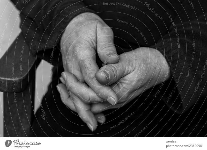 Hände in Rente - gefaltete Hände in Schwarz-Weiß Finger Hand Mann maskulin Männlicher Senior 45-60 Jahre Erwachsene 60 und älter Holz sitzen warten ruhig