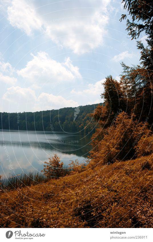 Himmel Natur Ferien & Urlaub & Reisen blau Pflanze Wasser Baum Erholung rot Blatt Landschaft Wolken Umwelt Herbst Küste Schwimmen & Baden