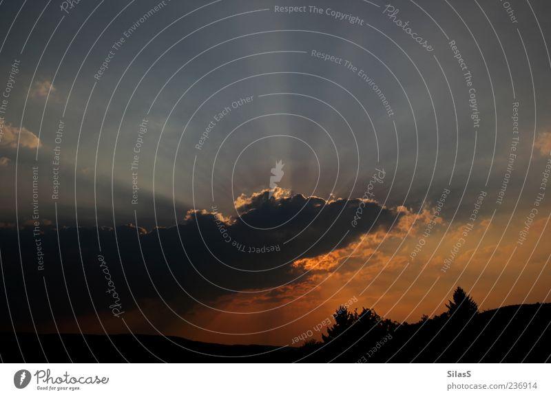 Lichtgewaltig Landschaft Himmel Wolken Nachthimmel fantastisch gigantisch blau gelb gold grau schwarz weiß Sonnenlicht Abenddämmerung Textfreiraum oben Farbfoto