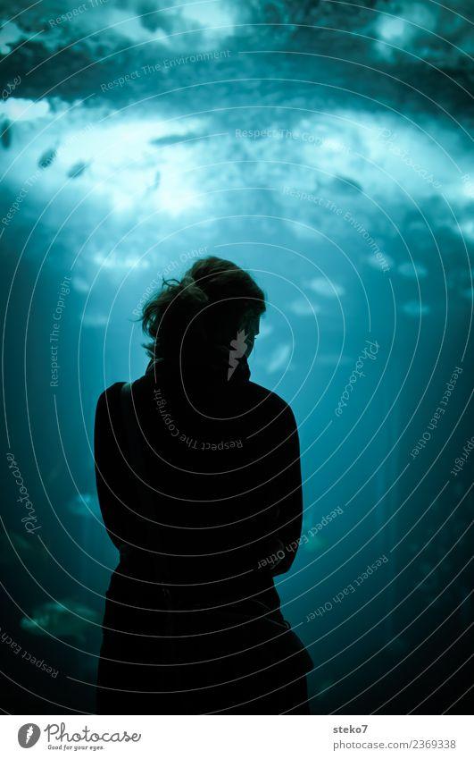 Frau vor Aquarium Junge Frau Jugendliche 1 Mensch Fisch beobachten dunkel maritim blau schwarz ruhig Einsamkeit entdecken Erholung Gedeckte Farben Kontrast