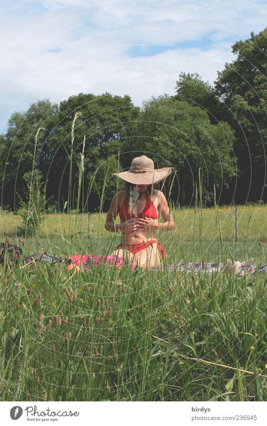 Die Sonne genießen Glück harmonisch Junge Frau Jugendliche Leben 1 Mensch Natur Pflanze Sommer Schönes Wetter Gras Wiese berühren hocken ästhetisch natürlich