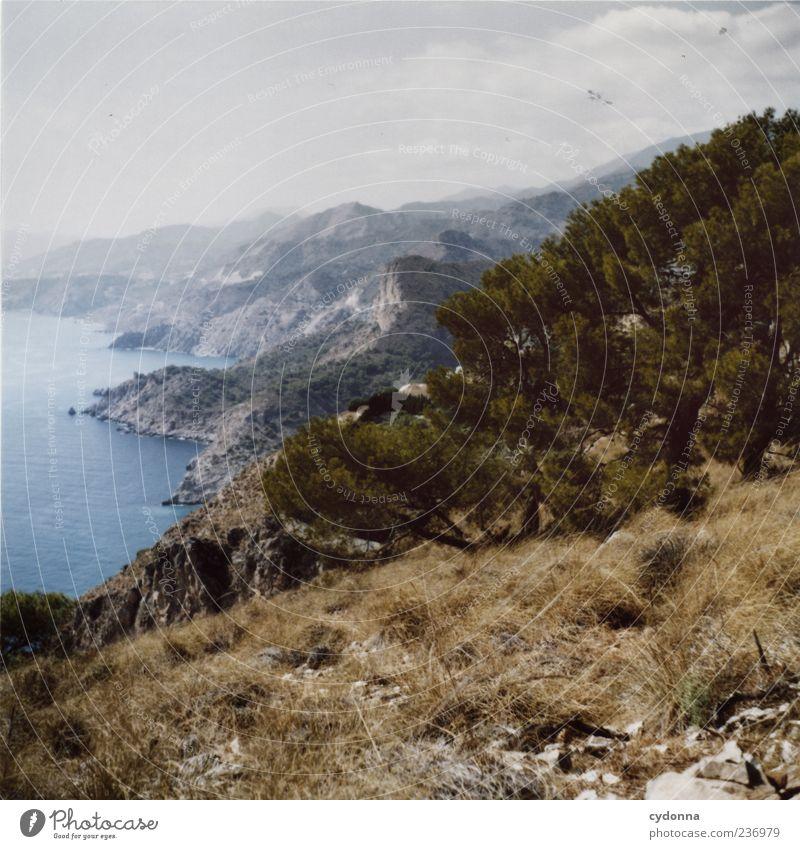 Spanien Himmel Natur Baum Ferien & Urlaub & Reisen Pflanze Meer Sommer Einsamkeit ruhig Ferne Erholung Umwelt Landschaft Leben Berge u. Gebirge Wärme